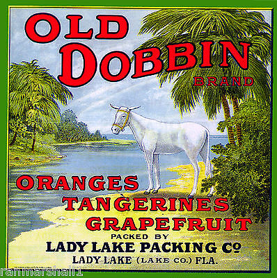 Lady Lake Florida Old Dobbin Donkey Mule Orange Citrus Fruit Crate Label Print