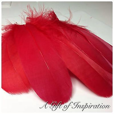 5 x 12-17cm RED Goose Feathers DIY Art Craft Millinery Dream Catcher Party
