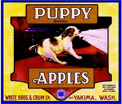 Yakima Washington State Terrier Puppy Dog Apple Fruit Crate Label Art Print