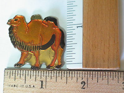 Camel Pin Badge (Lg)