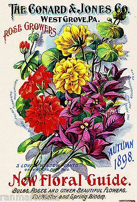 1898 - Rose Growers Vintage Flowers Seed Packet Catalogue Advertisement Poster