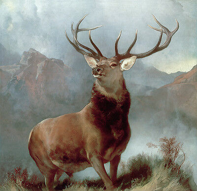 Monarch of the Glen Wall Art Print Picture