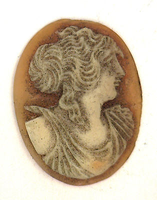 NOS Antique Oval Carved Shell Detailed Cameo Stone Piece 24.5 mm x 19 mm #ZZ107