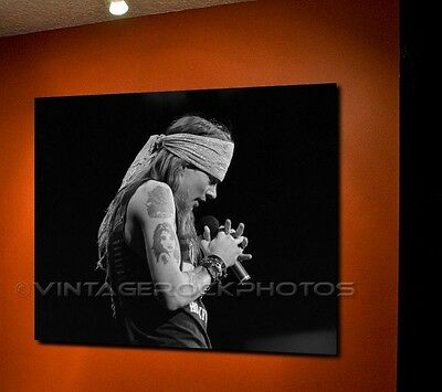Axl Rose Guns n Roses 20X30 inch Fine Art Gallery Canvas Print Photo Framed 9