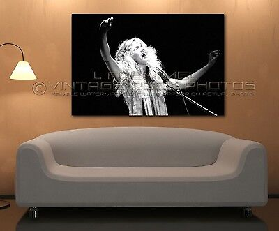 Stevie Nicks Poster Fleetwood Mac 24x36 in Photo '70s Live Concert Pro Print L68
