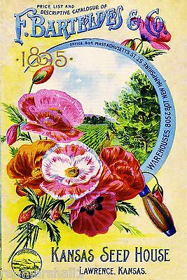 1895 - Kansas Seed Vintage Flowers Seed Packet Catalogue Advertisement Poster