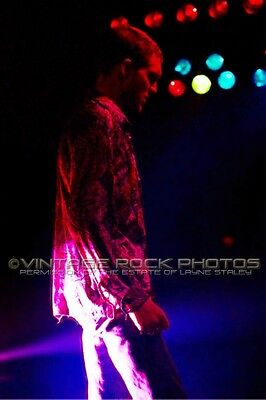 Layne Staley Alice In Chains Photo 8x12 or 8x10 inch Live Concert Pro Print  5