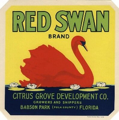 Babson park Florida Red Swan Orange Citrus Fruit Crate Label Print
