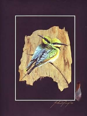 Rainbow Bee Eaters Signed By Artist - Inc Real Feathers - Australiana