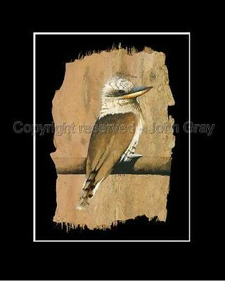 LAUGHING KOOKABURRA - Print - SIGNED by Artist  CORPORATE GIFTS !!