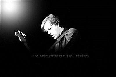 David Gilmour, PINK FLOYD 16x20 inch Poster Photo Live 70s Pro Concert Print 58