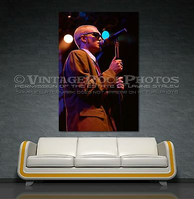 Layne Staley Alice In Chains Poster 40x60 inch Photo Live Concert Canon Print 7