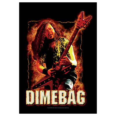 PANTERA Dimebag Darrell Fire Tapestry Cloth Poster Flag Wall Banner New 30 x 40