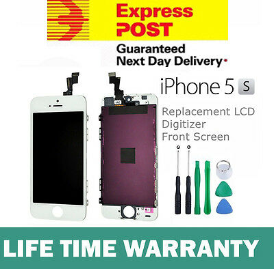 For iPhone 5S Replacement LCD Digitizer Front Screen Assembly Panel + Tool White
