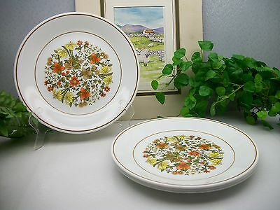 Lot of 4 Corelle Corning INDIAN SUMMER Luncheon Lunch Lg Salad Plates  EXCELLENT
