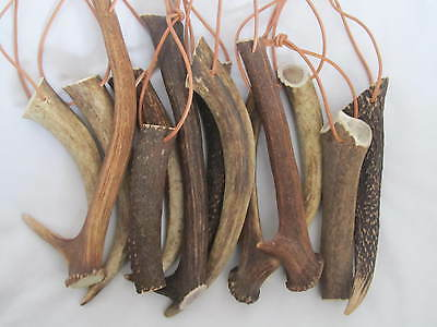 Two Pieces of Natural Deer Antlers, Dog Chews (XS,S,M,L,XL,XXL,HUGE, SUPER HUGE)
