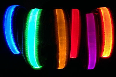 LED PET GLOW-IN -THE-DARK COLLAR dog cat night safety neck harness flash light