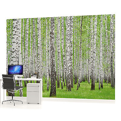 Forest Wood Landscape Trees PHOTO WALLPAPER WALL MURAL ROOM - 157VEVE