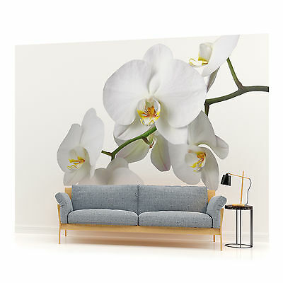 WALL MURAL PHOTO WALLPAPER (737PP)  Art Abstract Flowers Floral