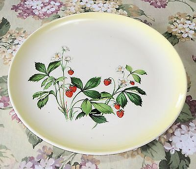 TST STRAWBERRIES TST84 Dinner Plate Taylor Smith Taylor Versatile NICE