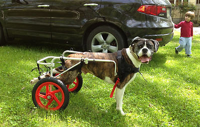 Best Friend Mobility New Dog Wheelchair Large Aluminum Lightwt Cart
