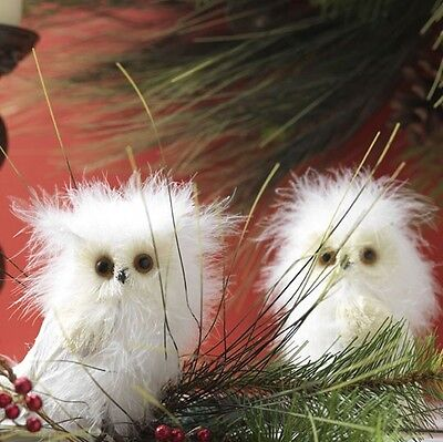 "Raz Imports 5.5"" Feathered White Owls (Set Of 12) 2852312"