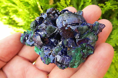 AZURITE CRYSTAL SPECIMEN FROM MILPILLAS MINE IN MEXICO  P.B. 4