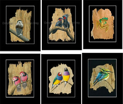 1x6  PRINTS SET- Fantastic Bulk Buy - Owl,Frog,Birds - Bark Art by John Gray