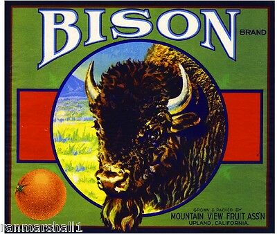 Upland San Bernardino Bison Buffalo Orange Citrus Fruit Crate Label Art Print