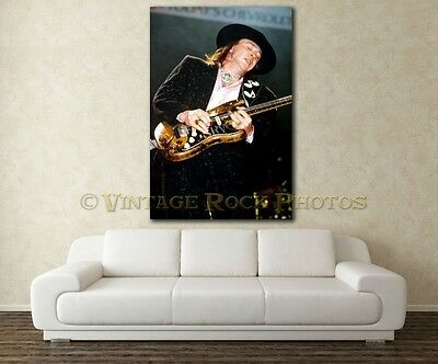 Stevie Ray Vaughan Poster 20x30 inch Pro Canon Photo '80s Live Concert Print 48