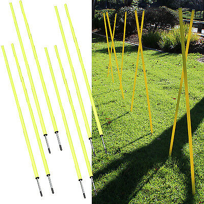 Speed Running Fitness Exercise Crossfit Workout Slalom Soccer Agility Pole Set 8