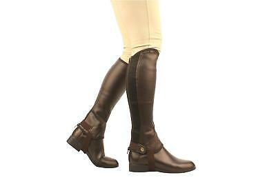 Saxon Equileather Adults Half Chaps