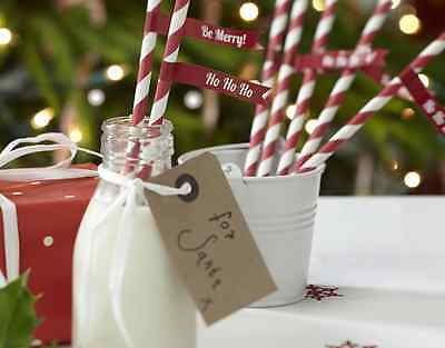 Christmas Cheer - Paper Straws with Flags - pk 25