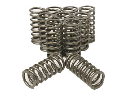 XR6 BA BF FG Ford Turbo Heavy Duty NEW DESIGN OVATE PLAZMAMAN Valve springs