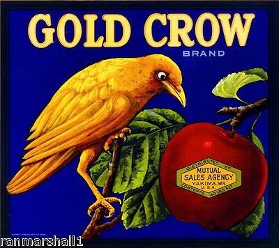 Yakima Washington State Gold Crow Bird Apple Fruit Crate Label Vintage Art Print