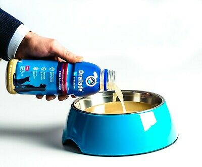 Kruuse GI Oralade Support 500ml - Dogs and Cats, Premium Service, Fast Dispatch