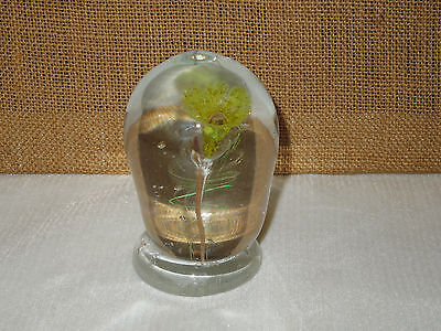 Vintage Signed Rollin Bodley Hand Blown Glass Paperweight Numbered 25 July 77