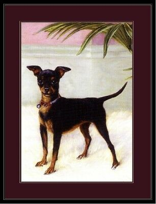 Picture Miniature Pinscher Rat Terrier Chihuahua Dog Art Vintage Poster Print