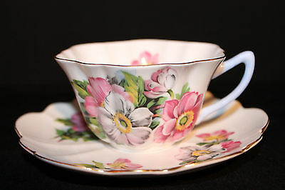 SHELLEY,  WILD ROSE  CUP AND SAUCER w  GOLD TRIM & lIGHT BLUE HANDLE