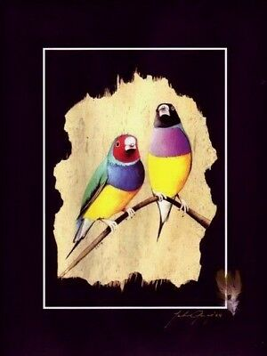 GOULDIAN FINCH- REAL FEATHERS - SIGNED- Unique Bark Art by John Gray