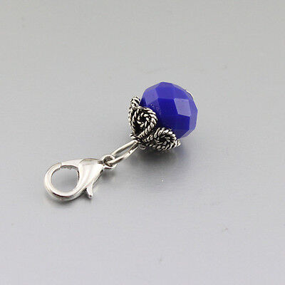 Crystal dangle Floating Charm for Glass Memory Locket necklace e446