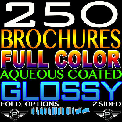 "High Quality 250 Brochure 8.5"" X 11"" Full Color 2 Sided 100Lb Glossy Folded"
