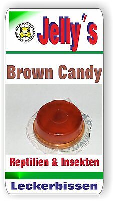 Jelly Food Dragon 20x16gr Fruchtgelee  Brown Candy f Reptilien Käfer Insekten