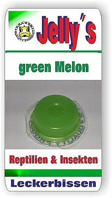 Jelly Food Dragon 20x16gr Fruchtgelee  Green Melone f Reptilien Käfer Insekten