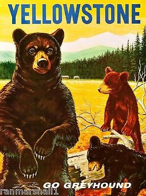 1950's Yellowstone National park United States Travel Advertisement Poster