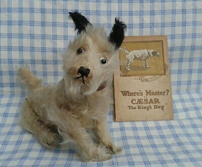 Vintage Farnell Caesar black and white terrier dog and book