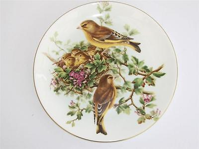 "Coalport Compton and Woodhouse Collectors Plate.""The Greenfinch""."