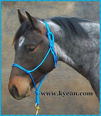 PROFESSIONALLY MADE ROPE HALTERS -35 COLOURS- Draft to Mini Sizes