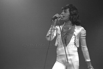 Freddie Mercury Queen Photo 8x12 or 8x10 inch '76 Cleveland Live Concert Print 8