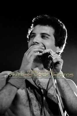 Freddie Mercury Queen Photo 8x12 or 8x10 in '79 Live Concert from Negative L53